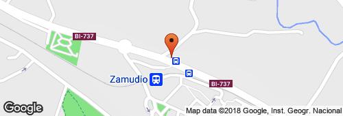 Hospital Psiquiatrico De Zamudio - Arteaga (San Martin)